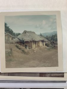What the Vietnamese people lived in. It was made of mud, sticks, and leaves